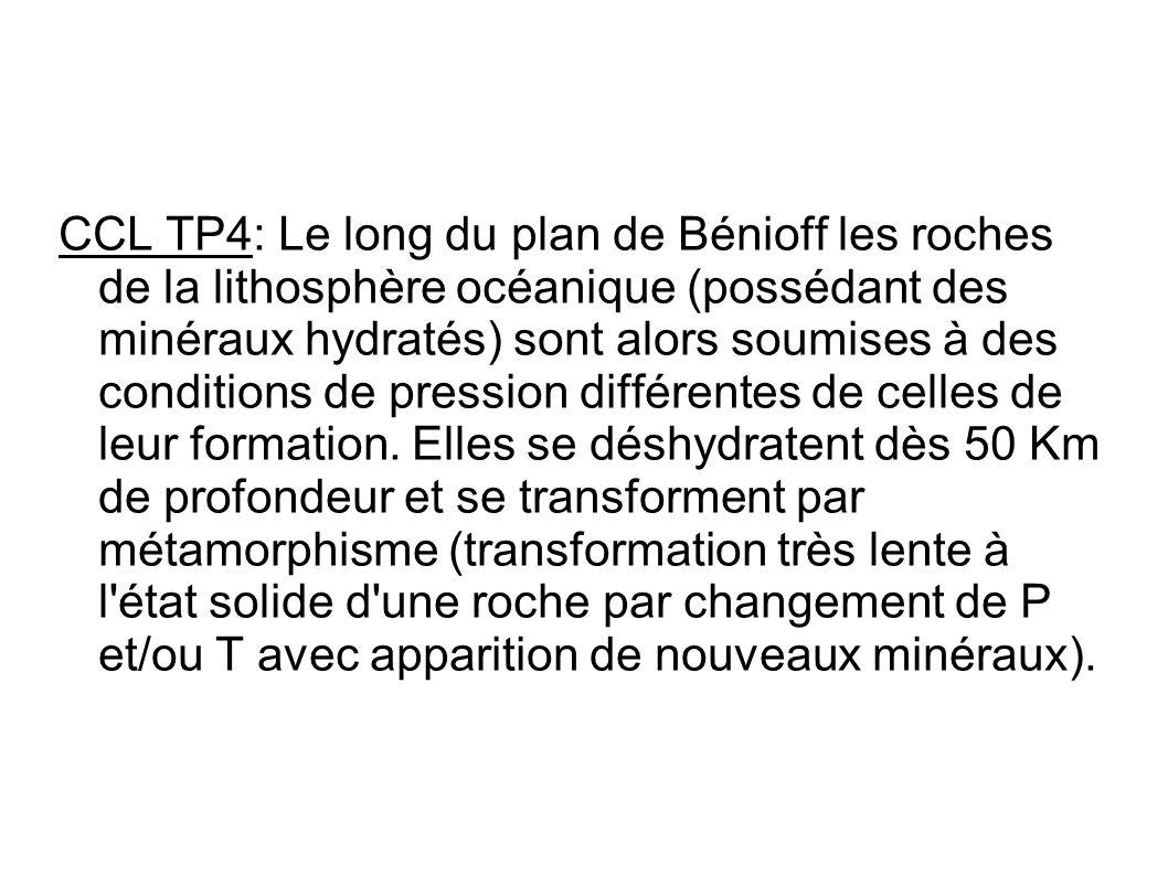 CCL TP4: Le long du plan de Bénioff les roches de la lithosphère océanique (possédant des minéraux hydratés) sont alors soumises à des conditions de p