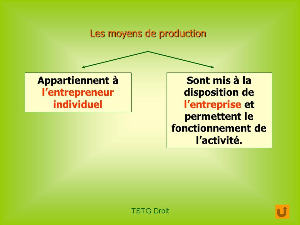 TSTG Droit Les moyens de production Appartiennent à lentrepreneur individuel Sont mis à la disposition de lentreprise et permettent le fonctionnement