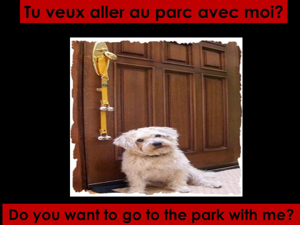 Do you want to go to the park with me? Tu veux aller au parc avec moi?