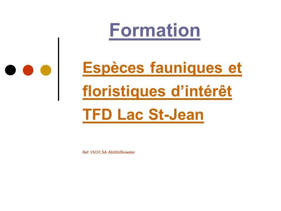 Espèces fauniques et floristiques dintérêt TFD Lac St-Jean Espèces fauniques et floristiques dintérêt TFD Lac St-Jean Ref :ISO/CSA AbitibiBowater Form