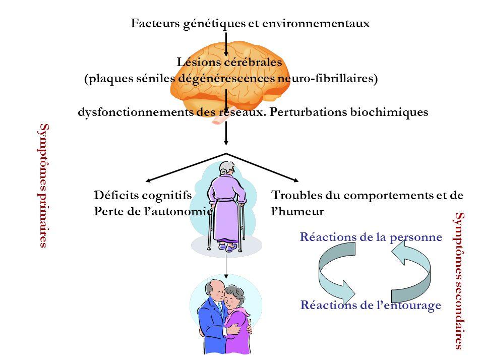Facteurs génétiques et environnementaux Lésions cérébrales (plaques séniles dégénérescences neuro-fibrillaires) dysfonctionnements des réseaux. Pertur