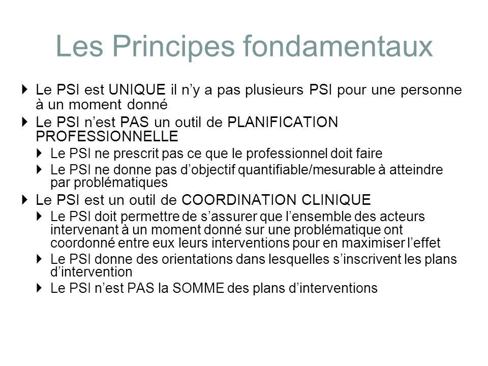 Les Principes fondamentaux Le PSI est UNIQUE il ny a pas plusieurs PSI pour une personne à un moment donné Le PSI nest PAS un outil de PLANIFICATION P