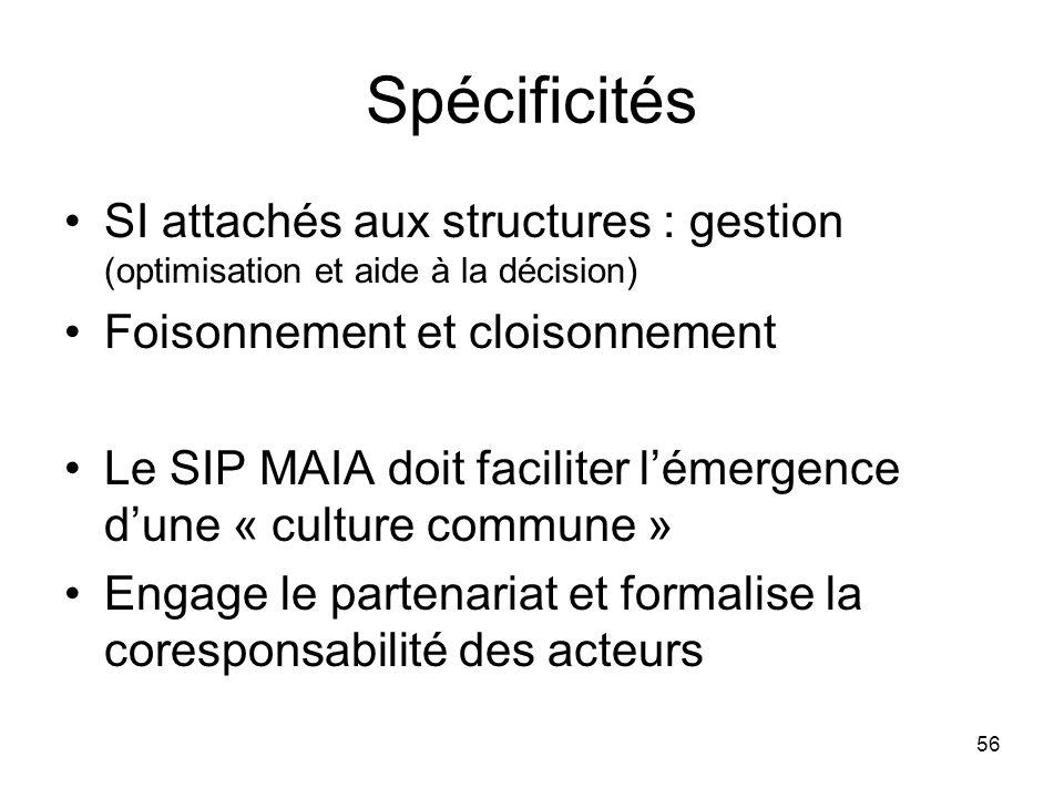 Spécificités SI attachés aux structures : gestion (optimisation et aide à la décision) Foisonnement et cloisonnement Le SIP MAIA doit faciliter lémerg