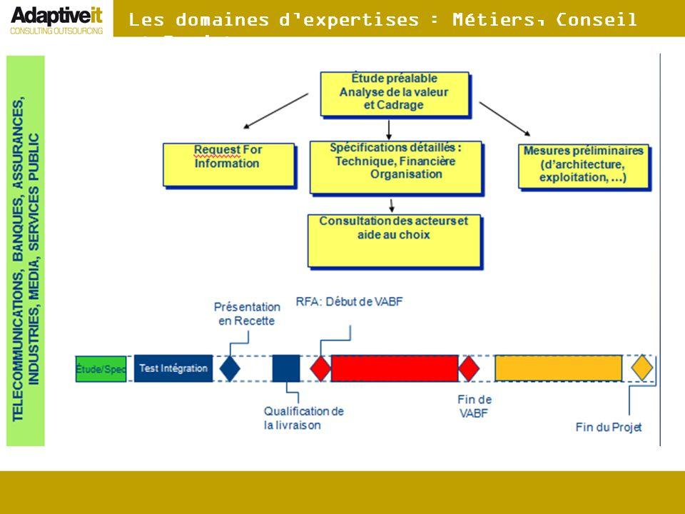 Les domaines dexpertises : Métiers, Conseil et Projet