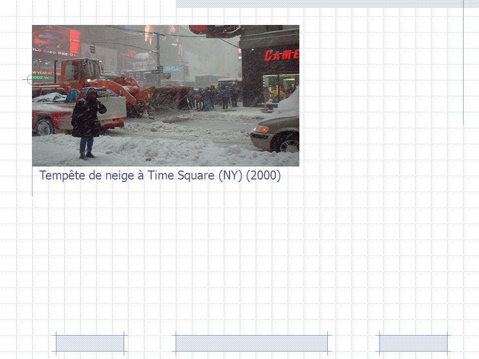 Tempête de neige à Time Square (NY) (2000)