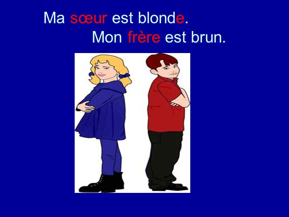 Ma sœur est blonde. Mon frère est brun.