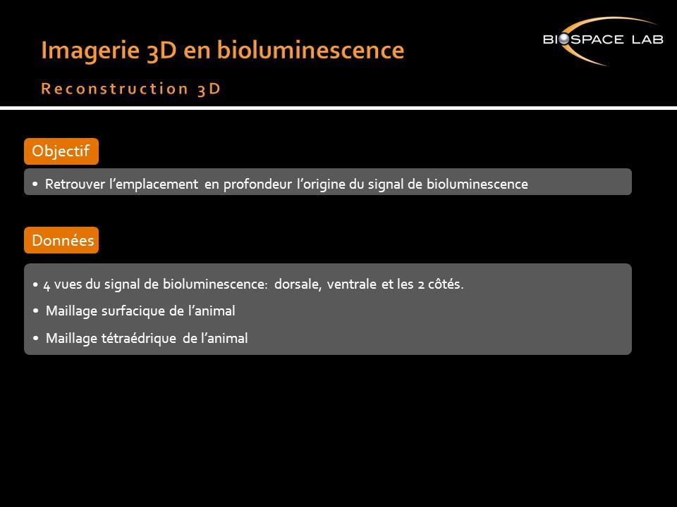 Retrouver lemplacement en profondeur lorigine du signal de bioluminescence Objectif 4 vues du signal de bioluminescence: dorsale, ventrale et les 2 cô