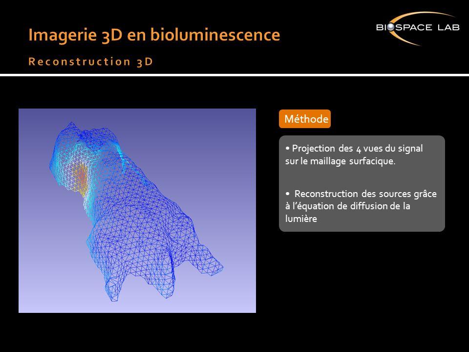 Projection des 4 vues du signal sur le maillage surfacique. Reconstruction des sources grâce à léquation de diffusion de la lumière Projection des 4 v