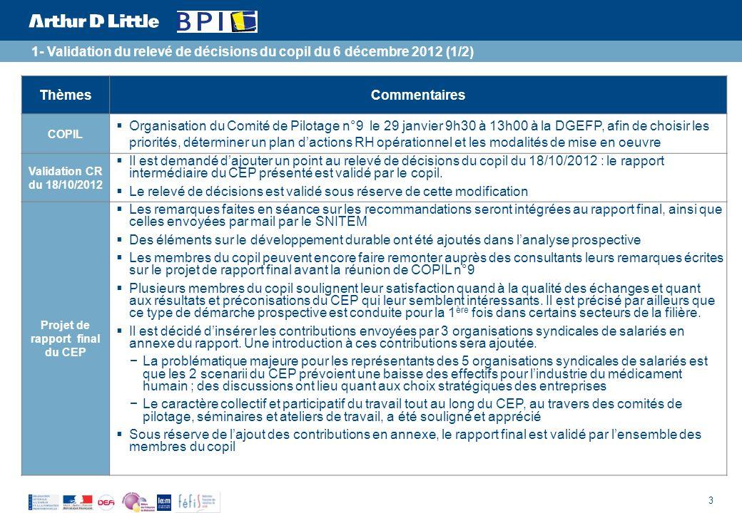 3 ThèmesCommentaires COPIL Organisation du Comité de Pilotage n°9 le 29 janvier 9h30 à 13h00 à la DGEFP, afin de choisir les priorités, déterminer un plan dactions RH opérationnel et les modalités de mise en oeuvre Validation CR du 18/10/2012 Il est demandé dajouter un point au relevé de décisions du copil du 18/10/2012 : le rapport intermédiaire du CEP présenté est validé par le copil.