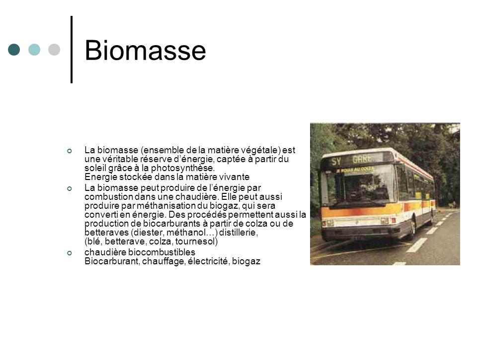 Biomasse La biomasse (ensemble de la matière végétale) est une véritable réserve dénergie, captée à partir du soleil grâce à la photosynthèse. Energie