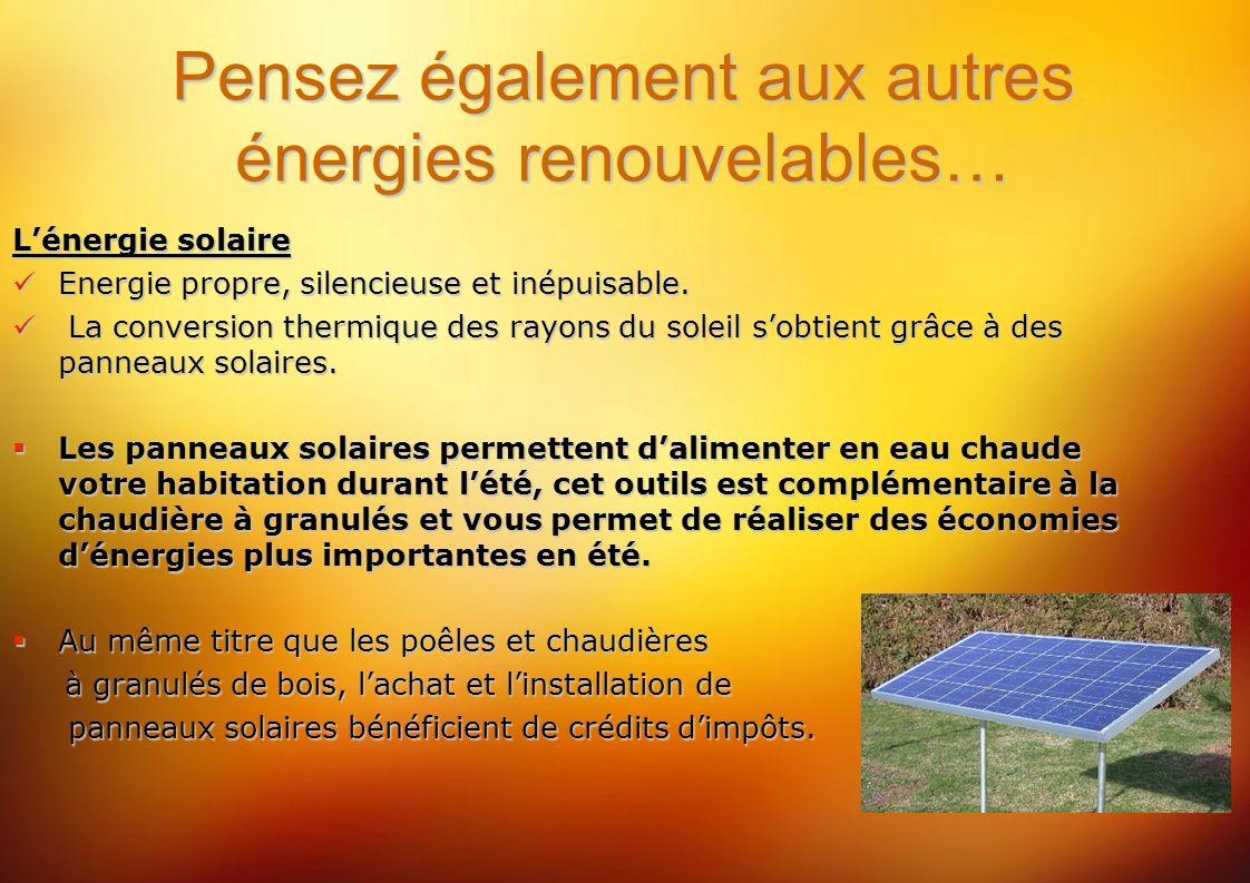 Pensez également aux autres énergies renouvelables… Lénergie solaire Energie propre, silencieuse et inépuisable.