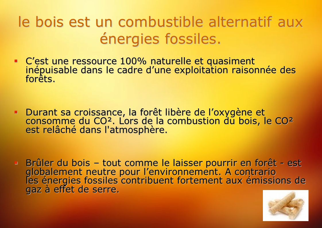 le bois est un combustible alternatif aux énergies fossiles.