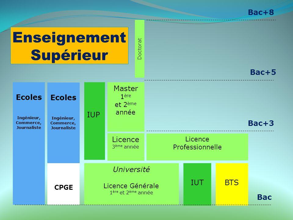 Enseignement Supérieur Université Licence Générale 1 ère et 2 ème année Ecoles Ingénieur, Commerce, Journaliste Ecoles Ingénieur, Commerce, Journalist