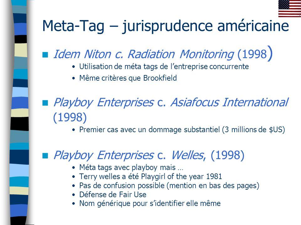 Meta-Tag – jurisprudence américaine Idem Niton c.