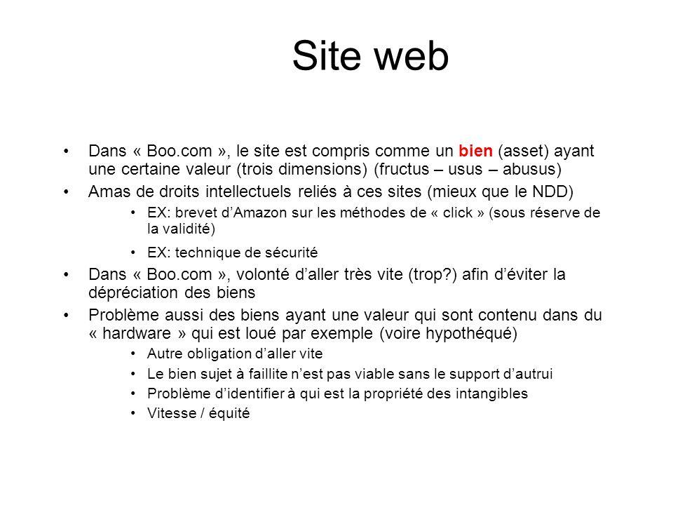 Site web Dans « Boo.com », le site est compris comme un bien (asset) ayant une certaine valeur (trois dimensions) (fructus – usus – abusus) Amas de dr
