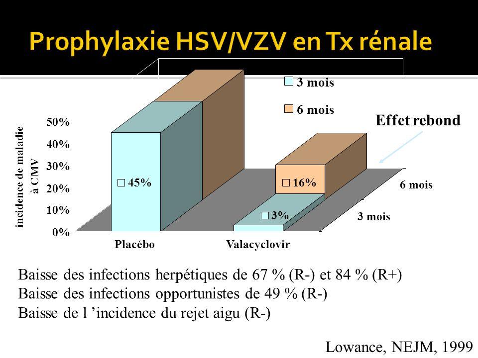 Lowance, NEJM, 1999 Baisse des infections herpétiques de 67 % (R-) et 84 % (R+) Baisse des infections opportunistes de 49 % (R-) Baisse de l incidence