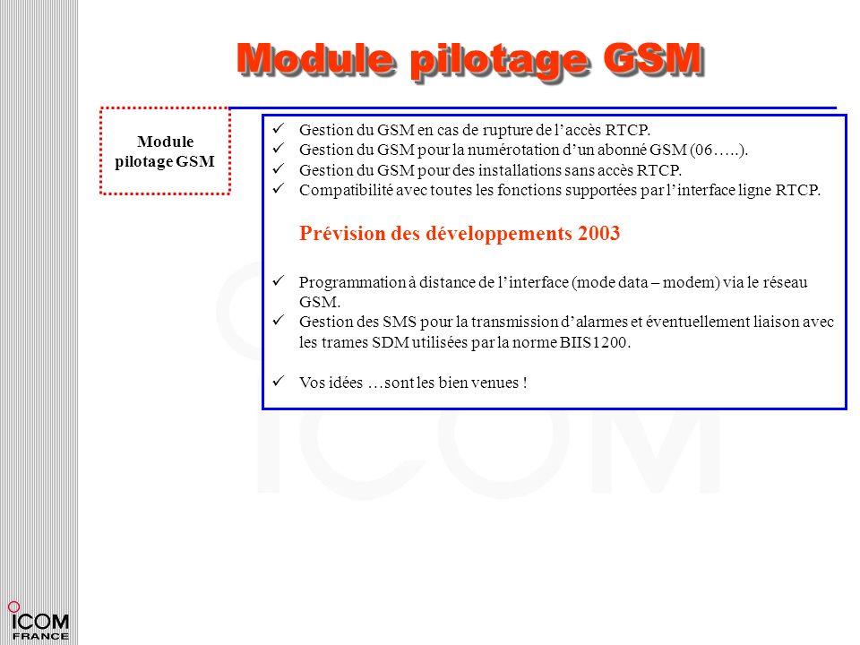 Module pilotage GSM Module pilotage GSM Gestion du GSM en cas de rupture de laccès RTCP. Gestion du GSM pour la numérotation dun abonné GSM (06…..). G
