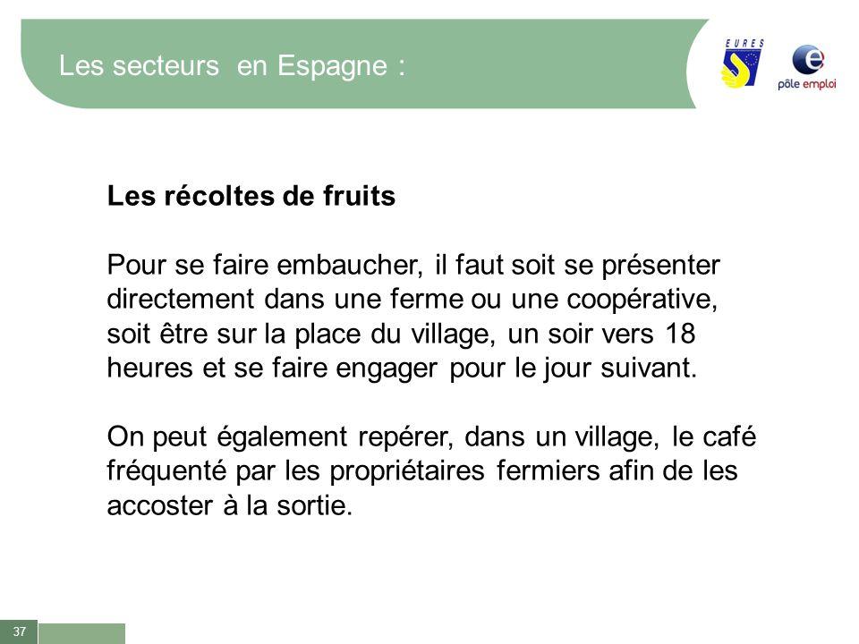 37 Les secteurs en Espagne : Les récoltes de fruits Pour se faire embaucher, il faut soit se présenter directement dans une ferme ou une coopérative,