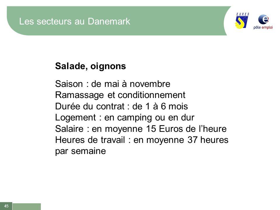 45 Les secteurs au Danemark Salade, oignons Saison : de mai à novembre Ramassage et conditionnement Durée du contrat : de 1 à 6 mois Logement : en cam