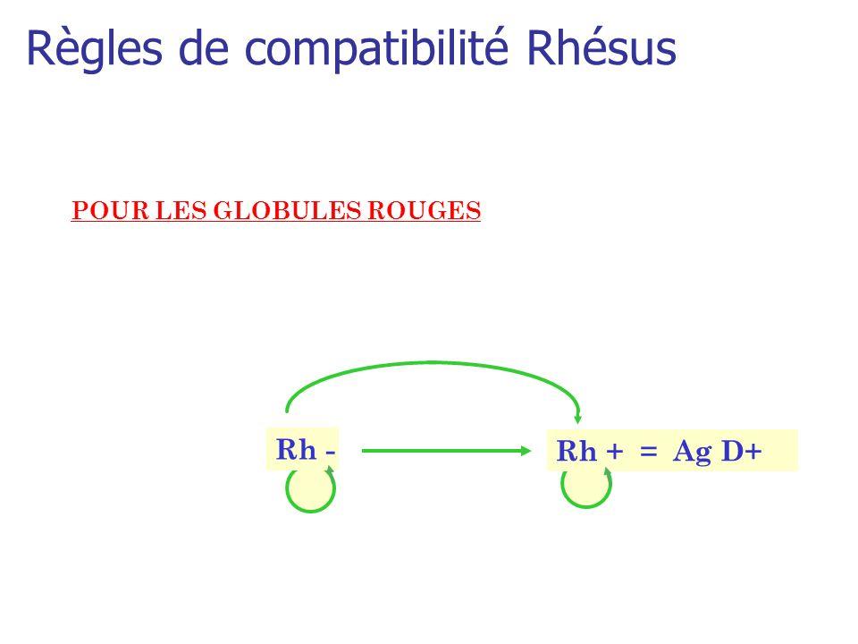Règles de compatibilité Rhésus POUR LES GLOBULES ROUGES Rh + = Ag D+ Rh -