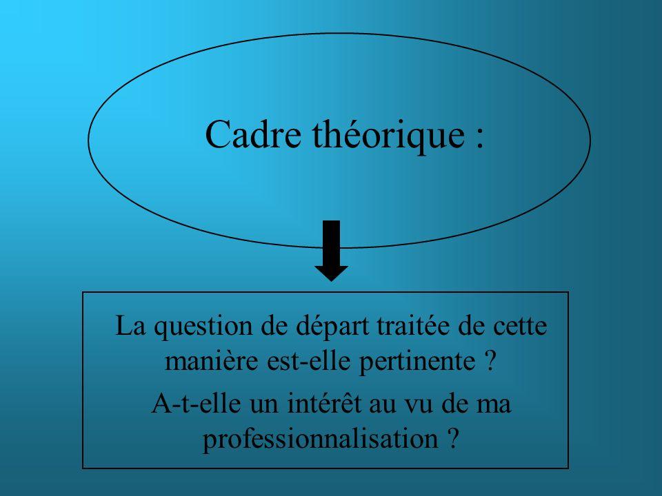 Cadre théorique : La question de départ traitée de cette manière est-elle pertinente ? A-t-elle un intérêt au vu de ma professionnalisation ?