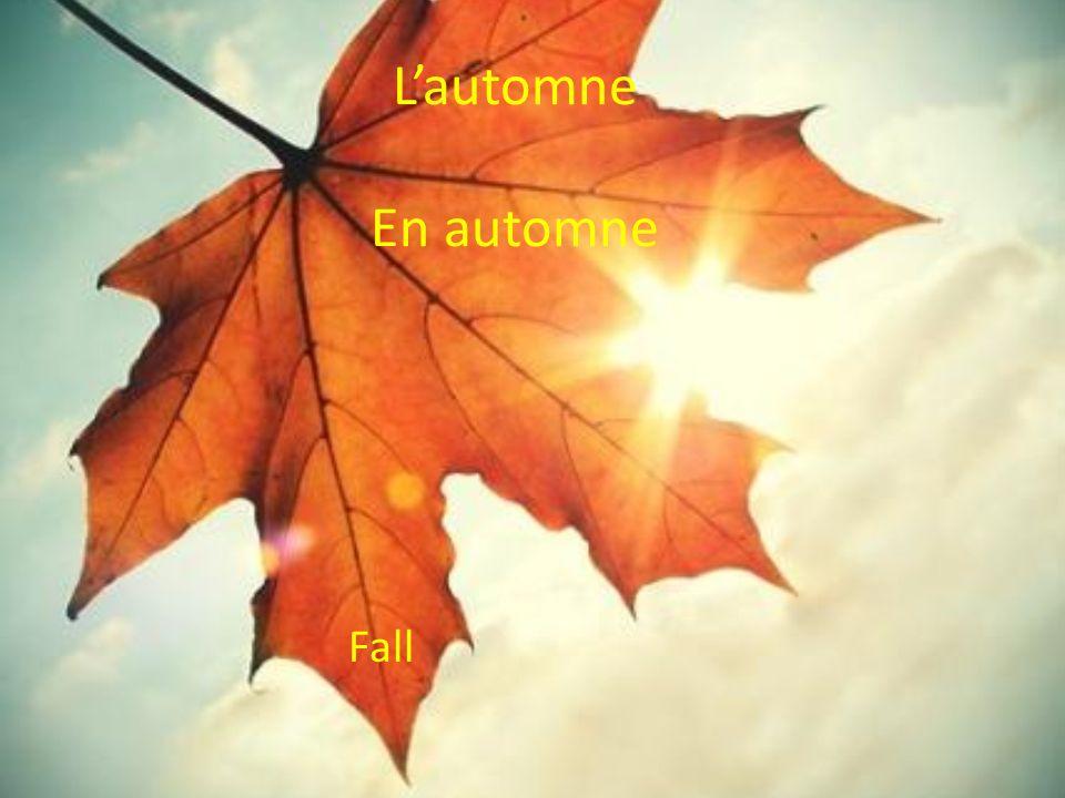 Lautomne En automne Fall