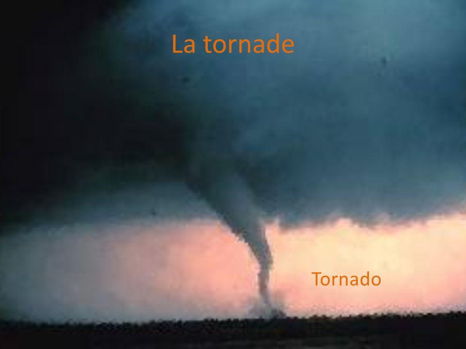 La tornade Tornado