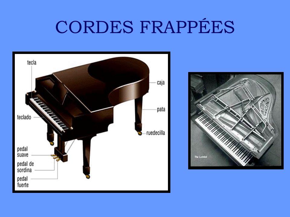 CORDES FRAPPÉES