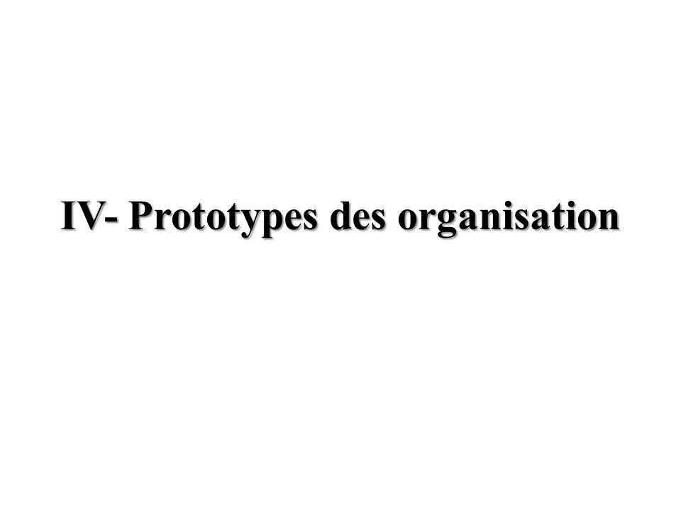 Organisation entrepreunariale Environnement simple et dynamique M.