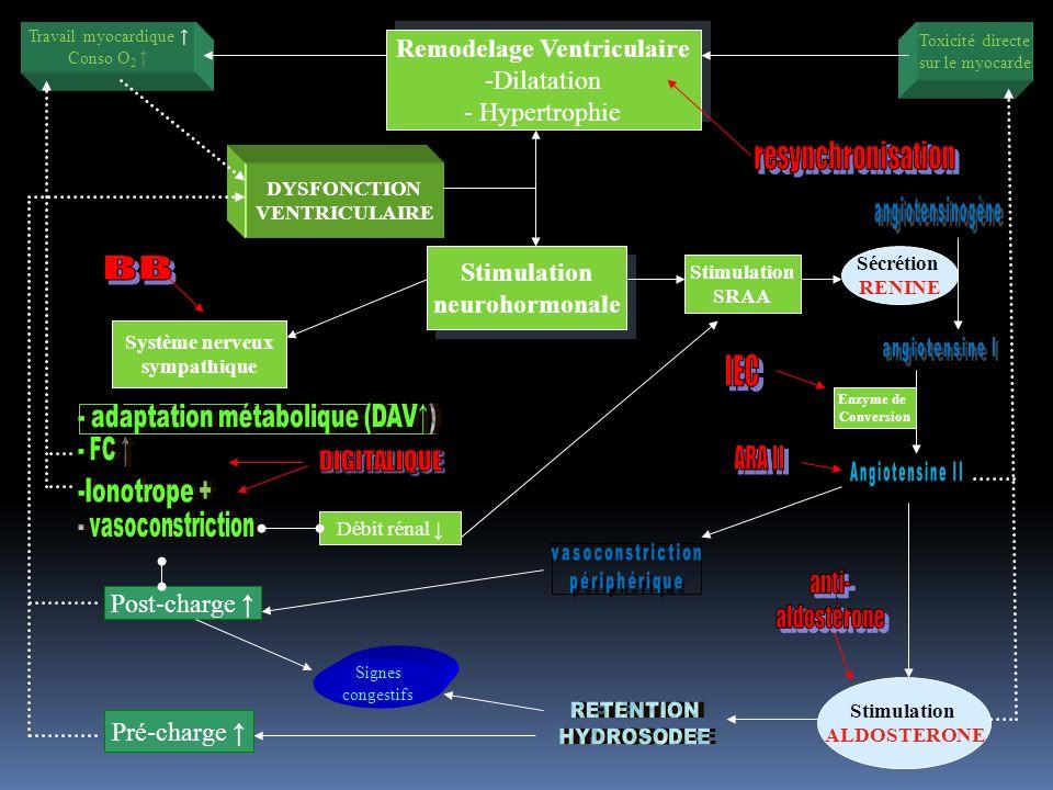 Enzyme de Conversion Stimulation ALDOSTERONE Travail myocardique Conso O 2 Toxicité directe sur le myocarde DYSFONCTION VENTRICULAIRE Remodelage Ventr