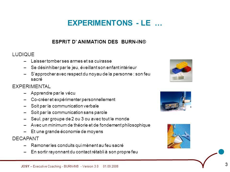 JOSY – Executive Coaching - BURN-IN® - Version 3.0 01.09.2008 4 …POUR PLUS LE VIVRE AU QUOTIDIEN.
