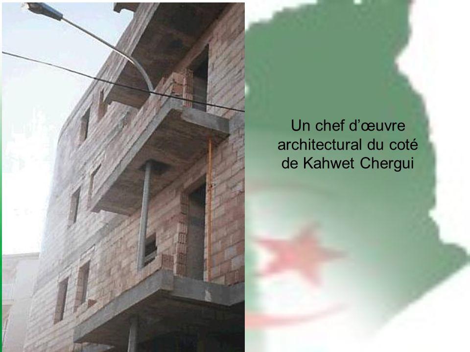 Un chef dœuvre architectural du coté de Kahwet Chergui