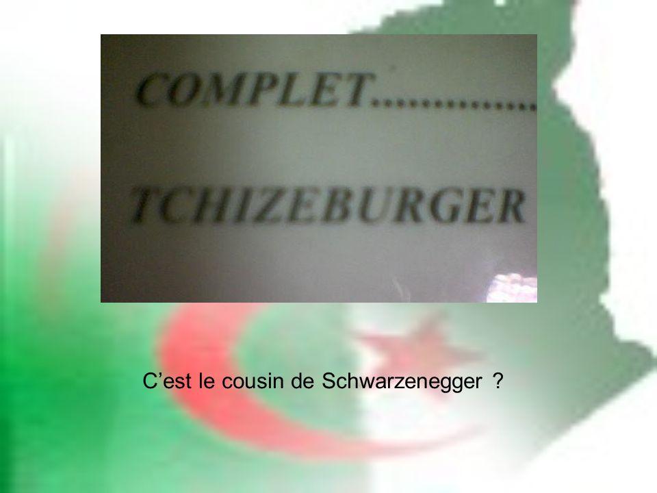 Cest le cousin de Schwarzenegger ?