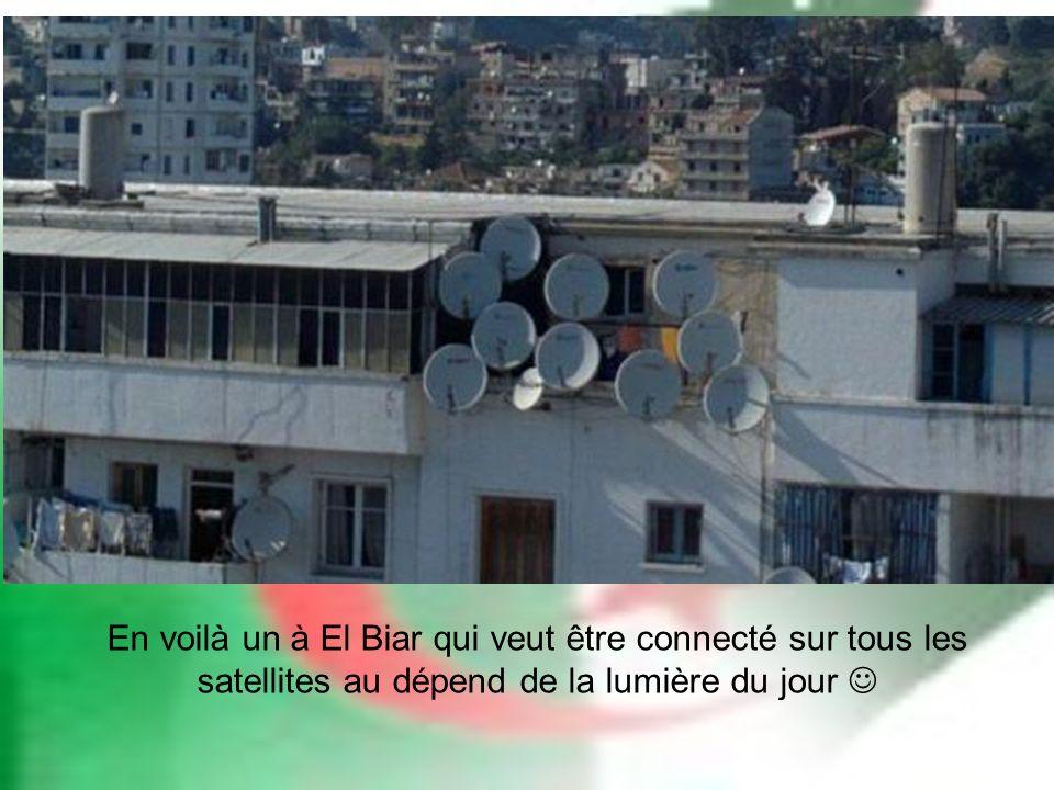 En voilà un à El Biar qui veut être connecté sur tous les satellites au dépend de la lumière du jour