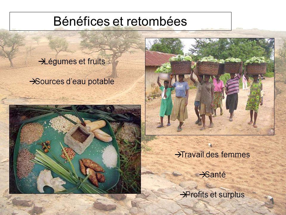 Bénéfices et retombées Légumes et fruits Sources deau potable Travail des femmes Santé Profits et surplus