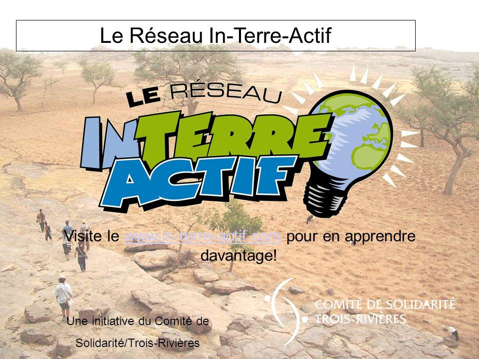 Le Réseau In-Terre-Actif Visite le www.in-terre-actif.com pour en apprendre davantage!www.in-terre-actif.com Une initiative du Comité de Solidarité/Tr