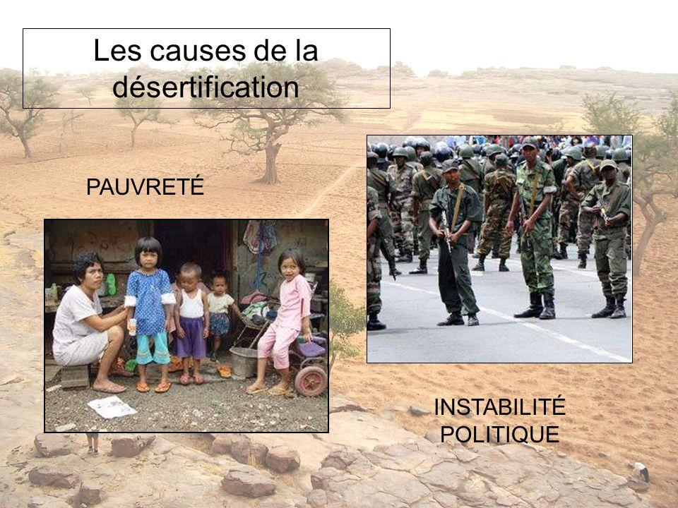 PAUVRETÉ INSTABILITÉ POLITIQUE Les causes de la désertification