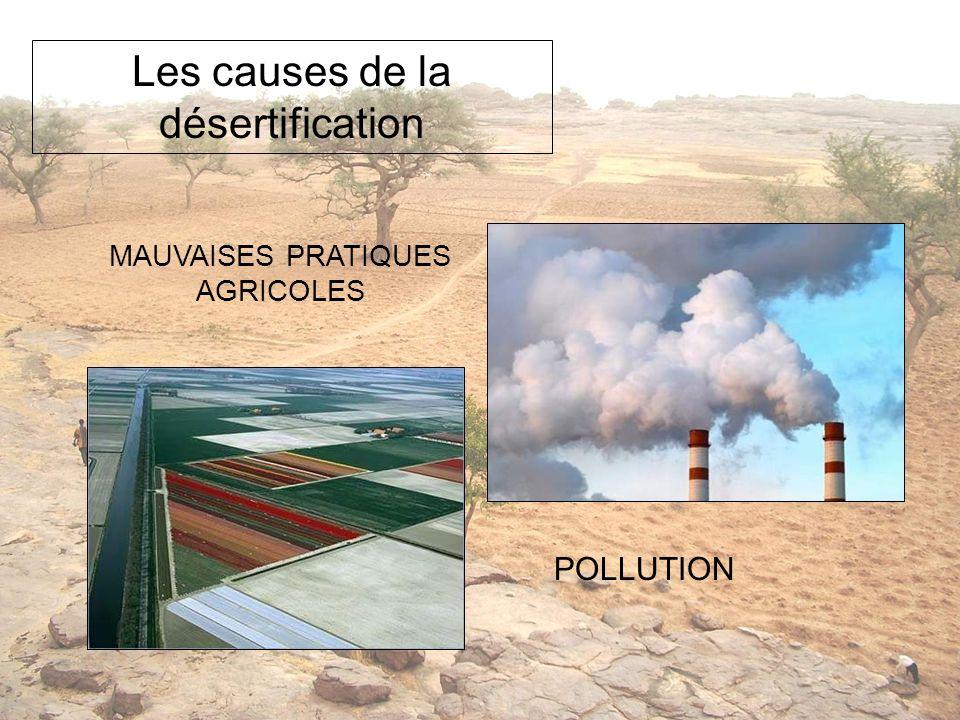 MAUVAISES PRATIQUES AGRICOLES Les causes de la désertification POLLUTION