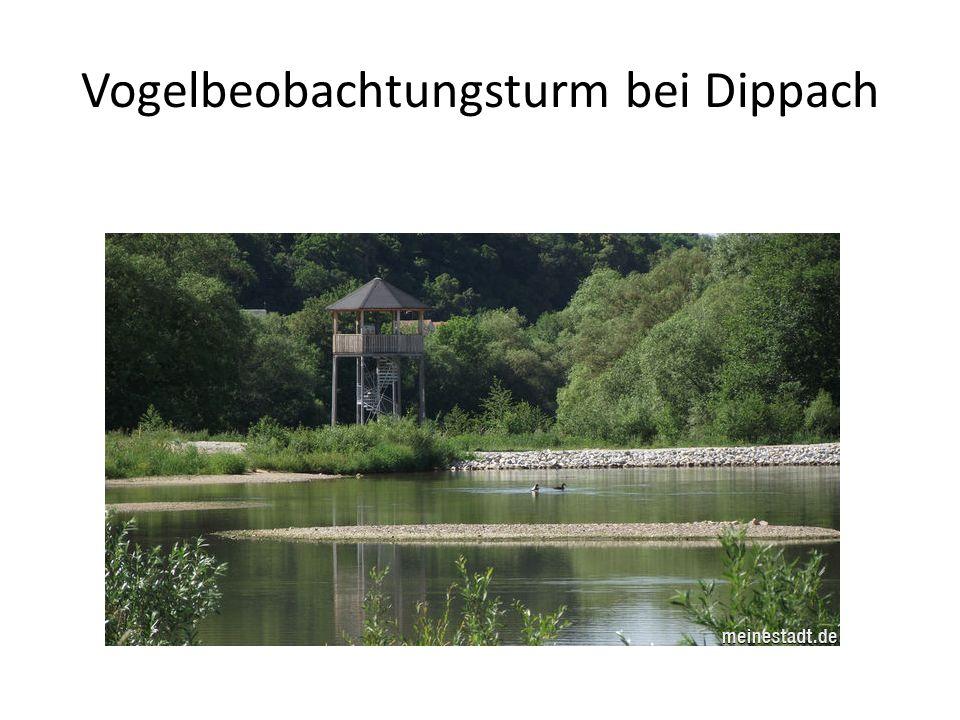 Vogelbeobachtungsturm bei Dippach