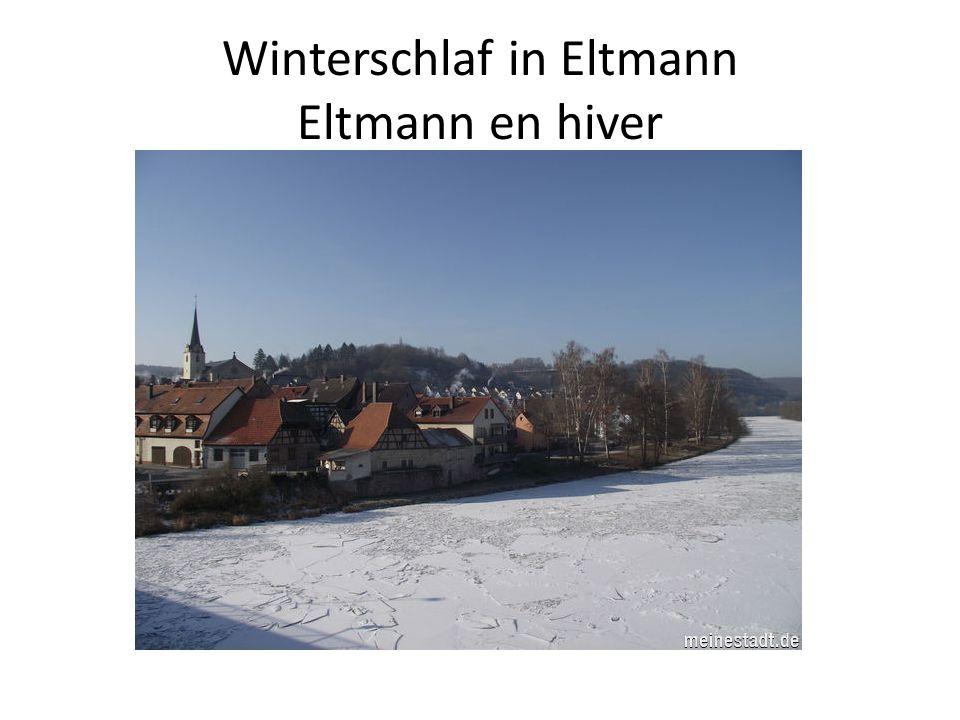 Skyline von Eltmann