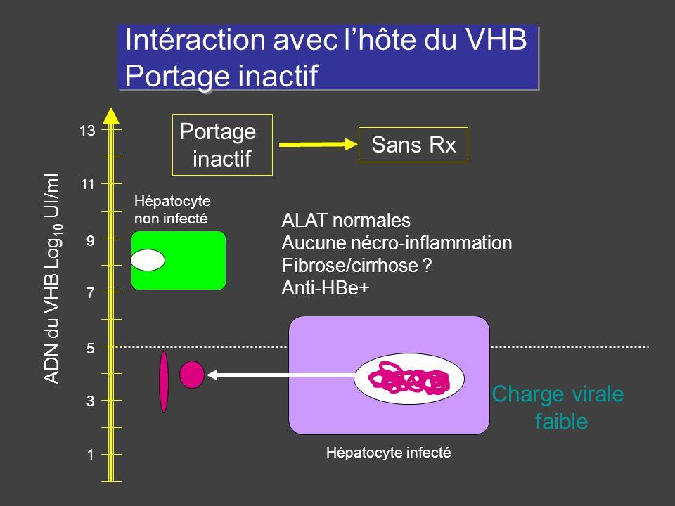 1 3 5 7 9 11 13 Hépatocyte infecté Hépatocyte non infecté Intéraction avec lhôte du VHB Portage inactif Portage inactif Sans Rx Charge virale faible A