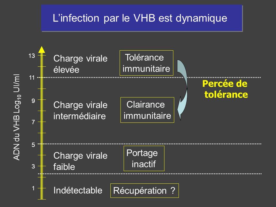 1 3 5 7 9 11 13 Linfection par le VHB est dynamique Charge virale élevée Charge virale faible Charge virale intermédiaire Indétectable Tolérance immun