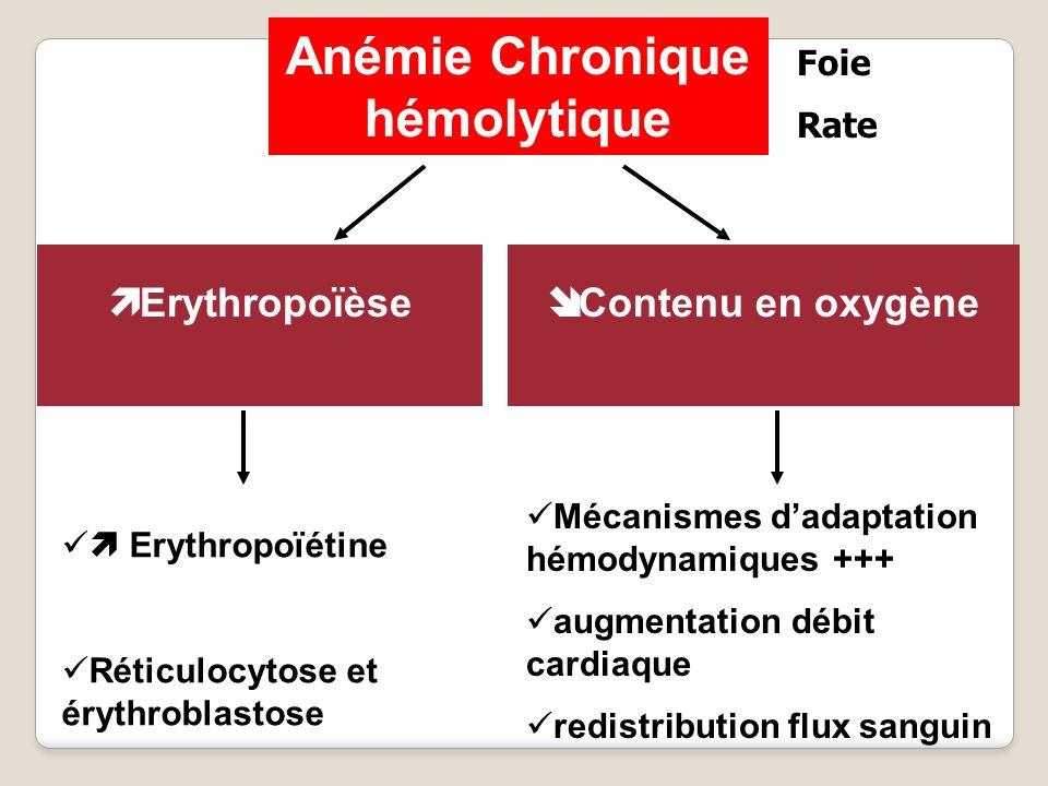 Anémie Chronique hémolytique Erythropoïèse Contenu en oxygène Mécanismes dadaptation hémodynamiques +++ augmentation débit cardiaque redistribution fl