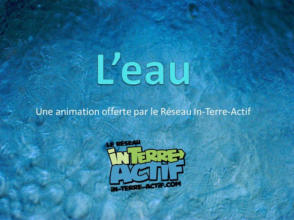 Une animation offerte par le Réseau In-Terre-Actif