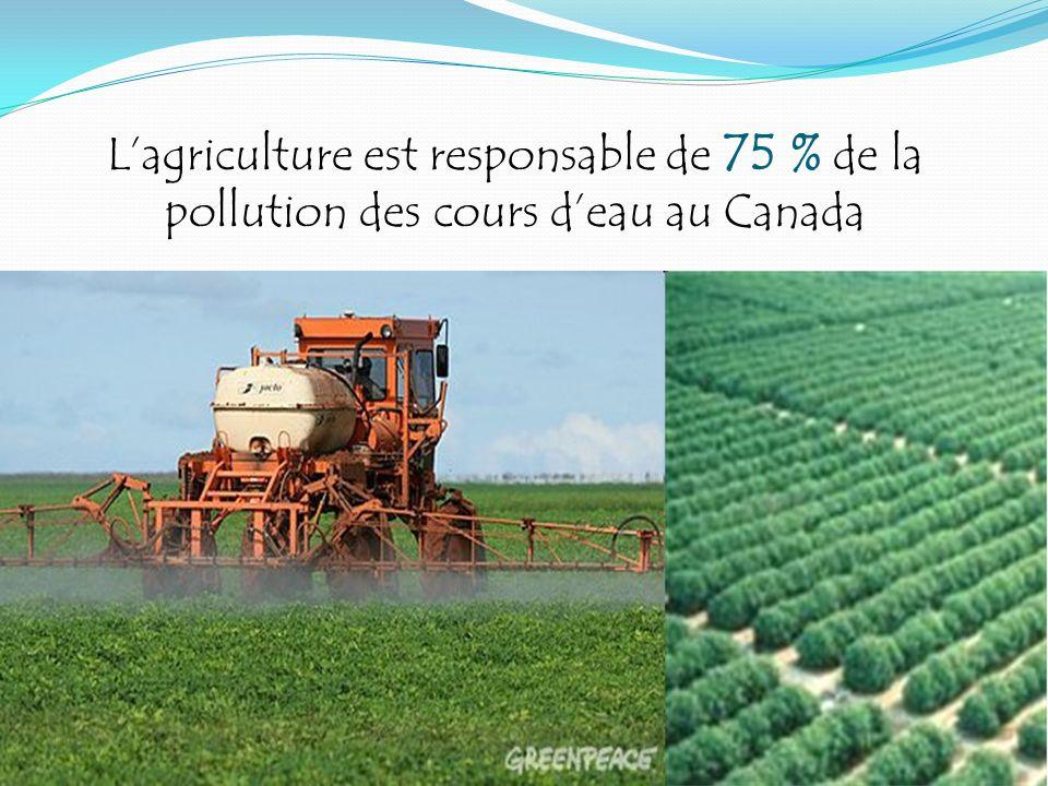 Lagriculture est responsable de 75 % de la pollution des cours deau au Canada