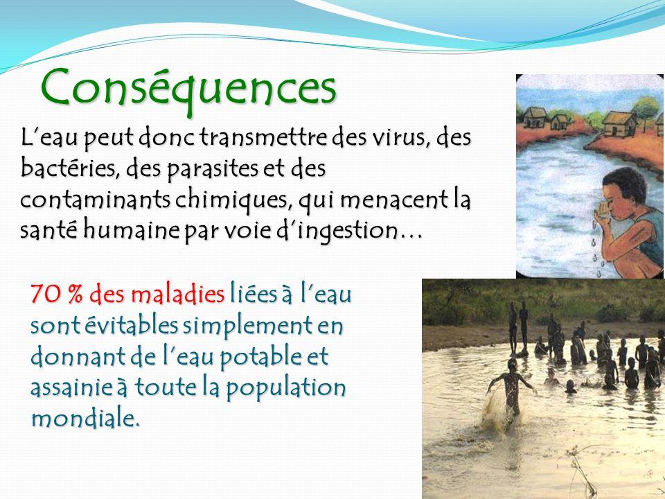 Conséquences Conséquences Leau peut donc transmettre des virus, des bactéries, des parasites et des contaminants chimiques, qui menacent la santé huma