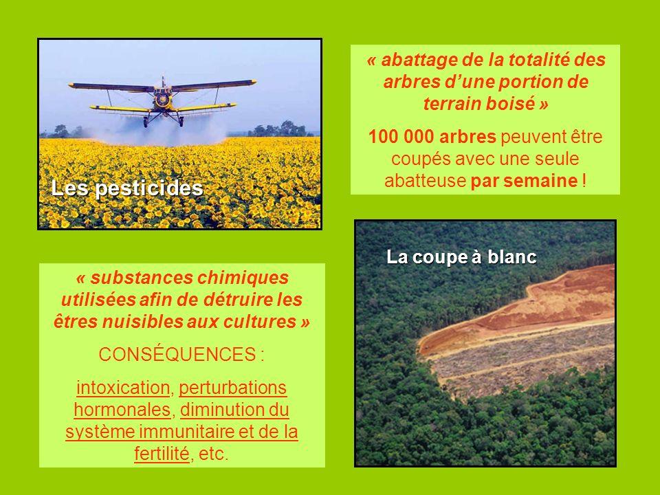 La coupe à blanc Les pesticides « substances chimiques utilisées afin de détruire les êtres nuisibles aux cultures » CONSÉQUENCES : intoxication, pert