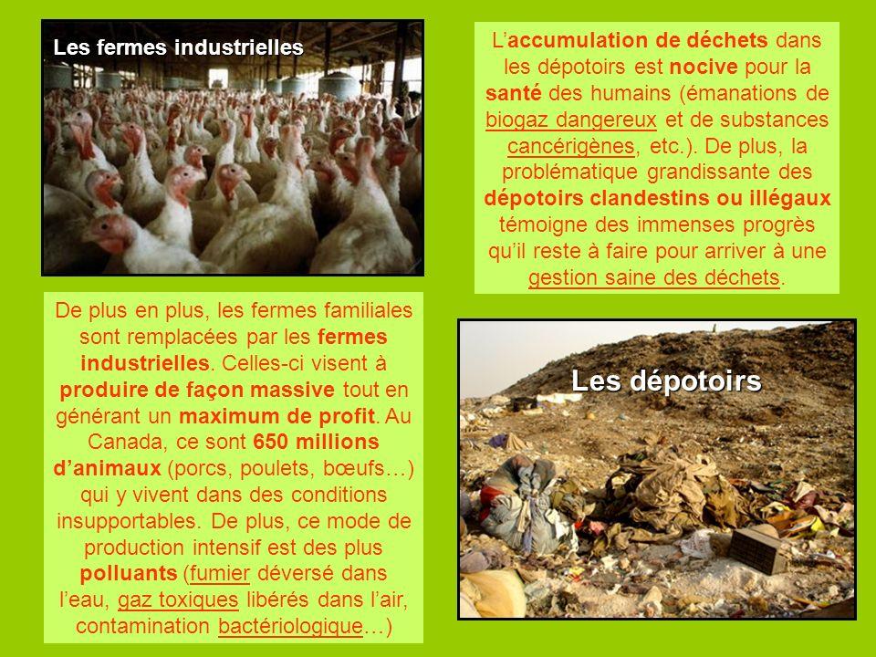 Les dépotoirs Les fermes industrielles De plus en plus, les fermes familiales sont remplacées par les fermes industrielles. Celles-ci visent à produir