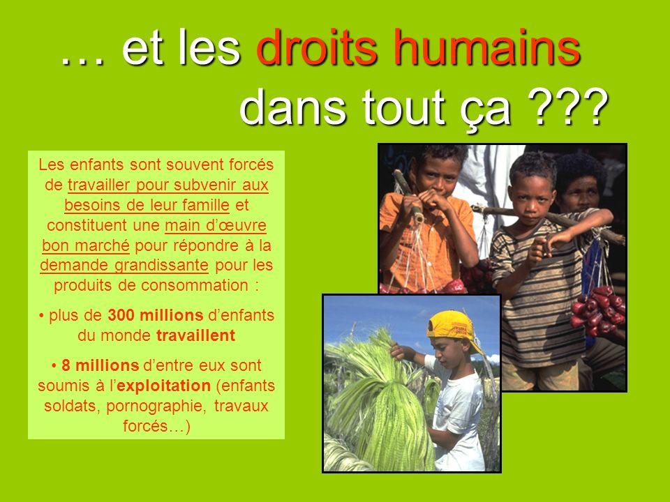 … et les droits humains dans tout ça ??? Les enfants sont souvent forcés de travailler pour subvenir aux besoins de leur famille et constituent une ma