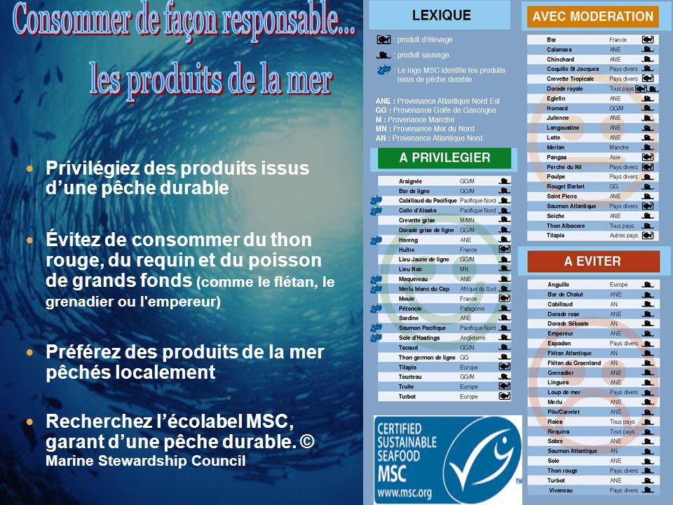 Selon la FAO, 80 % des stocks de poissons sont pleinement exploités, surexploités ou effondrés.